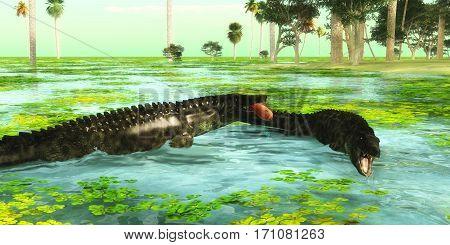 Tropical Uberabasuchus Marine Reptiles 3d illustration - Uberabasuchus reptiles catch fish in a tropical region of Brazil in the Cretaceous Period.