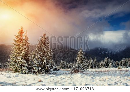 Mysterious Winter landscape with fog, majestic mountains in the winter. Sunset. Carpathian, Ukraine, Europe. Happy New Year. In anticipation of the holidays