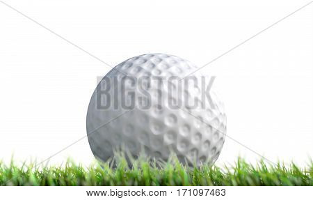 Golf Ball Resting On Grass