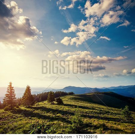 Fantastic foggy day and bright hills by sunlight. Dramatic morning scenery. Carpathian, Ukraine, Europe.