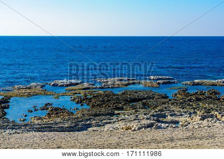 Shikmona Beach, In Haifa