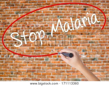 Woman Hand Writing Stop Malaria  With Black Marker On Visual Screen