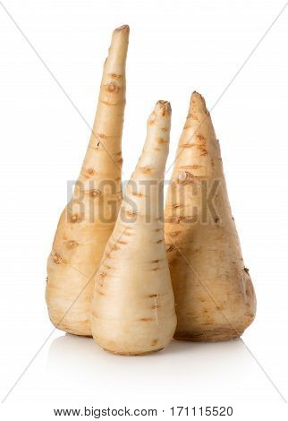 Three parsley roots isolated on a white background
