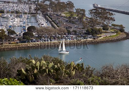View of a Sailboat sailing through Dana Point Harbor from the hiking path in Southern California USA on a sunny day