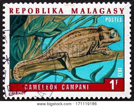 MALAGASY - CIRCA 1973: a stamp printed in Malagasy Madagascar shows Champani chameleon lizard circa 1973