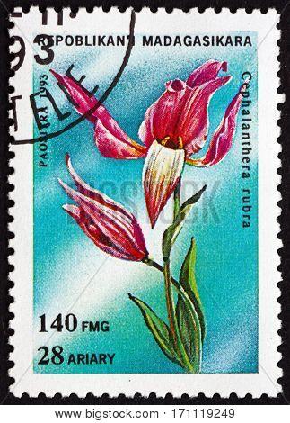 MALAGASY - CIRCA 1993: a stamp printed in Malagasy Madagascar shows Red helleborine cephalanthera rubra orchid circa 1993