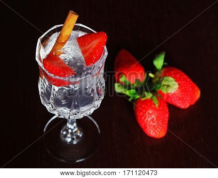 Strawberry Gin and Tonic with Cinnamon Stick