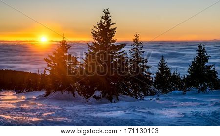Winter sunset in Kopaonik mountain range, Serbia