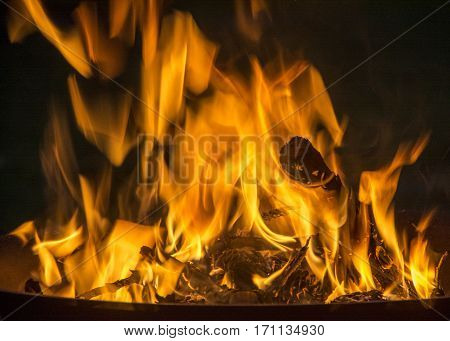 Flames burning wood in a fire pit