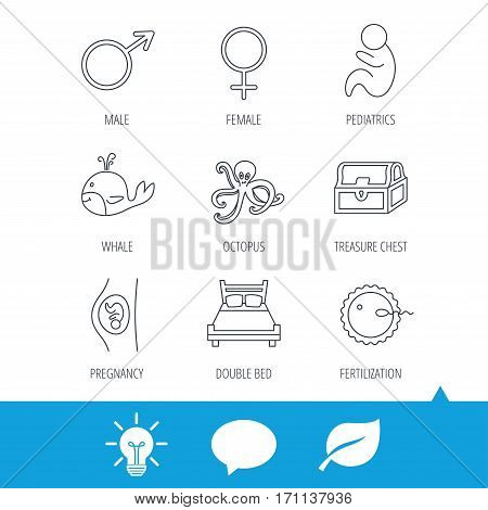Fertilization, pregnancy and pediatrics icons. Baby child, whale and octopus linear signs. Treasure chest, double bed icons. Light bulb, speech bubble and leaf web icons. Vector