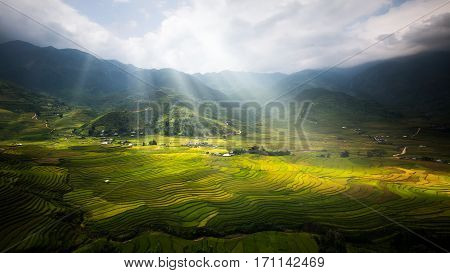Landscape of rice field in Tule near Sapa and Mu Cang Chai in Vietname