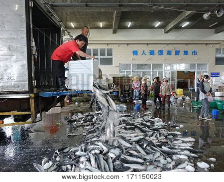 Selling Grey Mullet Fish In Taiwan
