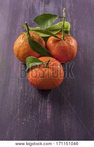A photo of vibrant orange tangerines with green leaves on a purple texture with copy space
