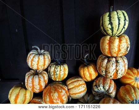 Sweet dumpling squash with dark green and orange stripes