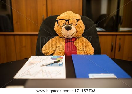 Teddy bear at work in his office. His name is Mario