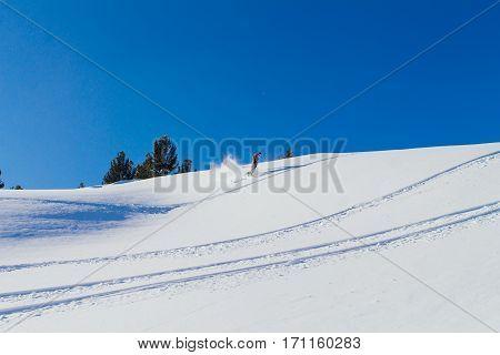 Snowboarder Riding Fresh Snow.