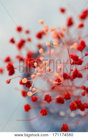 Tender red and pink flowers in blue crystal vase top view close up romantic table setting decoration wedding mother's day valentine greeting card template