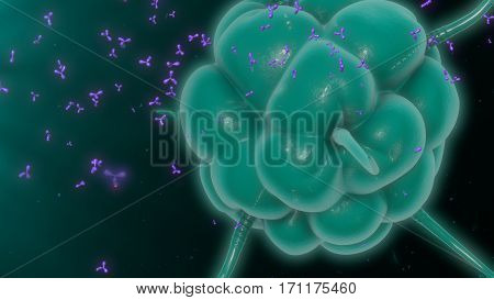 The microphage is a large white blood cell that is an integral part of our immune system. 3D