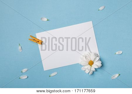 Spring top view composition: blank stationary template / invitation mockup scattered petals around white flower with yellow heart clothespin. Sky blue background with copy space for text. Flat lay.