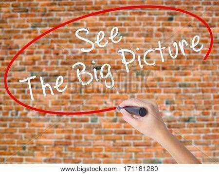 Woman Hand Writing See The Big Picture With Black Marker On Visual Screen