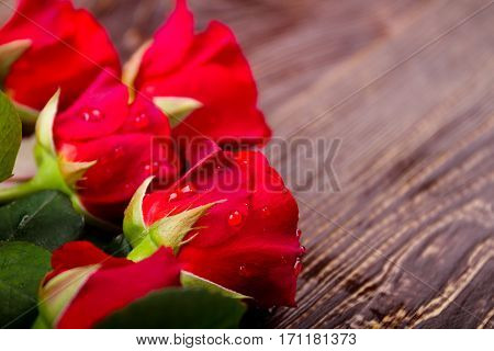 Water on roses. Flowers on wooden surface. Show your care. Simple date rule.