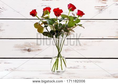 Red roses in curvy vase. Flowers on light wooden surface. Beauty of bloom. Perfect gift for any occasion.