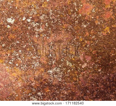 Old Rusty Metal Texture.