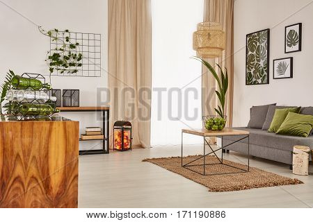 Living Room With Comfortable Sofa