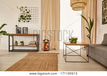 Apartment With Earty Decorations