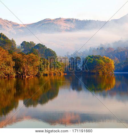 Wildlife Sanctuary And His Lake