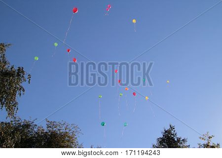colored balloons in the sky for a background, flying balloons