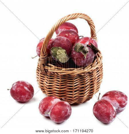 Arrangement of Frozen Sweet Red Plums with Leafs in Wicker Basket isolated on White background