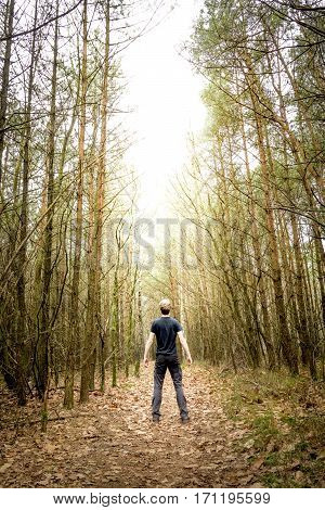 Strong man standing in the light in between a stark pine forest
