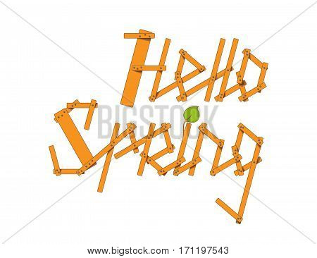 Hello Spring lettering from small planks and young branches isolated on white background. Vector illustration