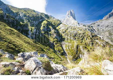 Spanish mountain Picos de Europa, climbing wall in nature Naranjo de Bulnes, european mountain summer landscape, mountain climbing in spain