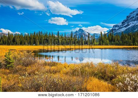 The mountains are covered in the snow. Autumn in Canada.  Shallow marshy lake in the Rocky Mountains. The concept of ecotourism