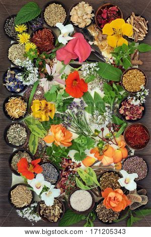 Flower and herb selection used in natural alternative herbal healing remedies on parchment and oak wood background.