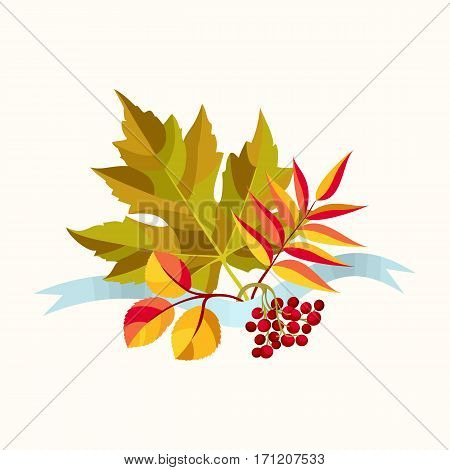 Autumn composition with colorful leaves of maple, aspen and rowan with red berries. Blue ribbon. Vector illustration.