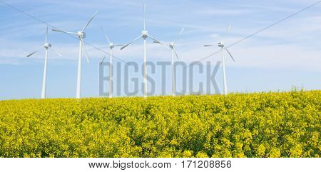 Windmills side by side against white background against scenic view of yellow mustard field 3d