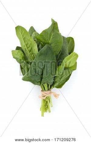 Banch of fresh spinach leaves. Isolated on white background.