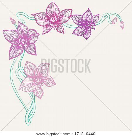 Orchid corner. Hand drawn flowers. Line art orchid branch for angle border. Decorative background for card or invitation design. Vector illustration.