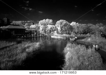 park Chicago south pond infrared black and white