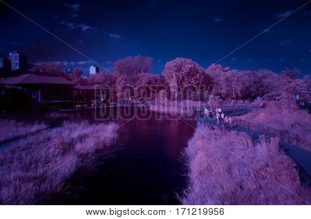 park Chicago south pond infrared pink and blue