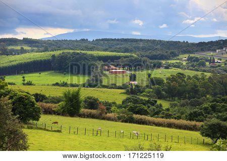 Scenic rural landscape in Brazil