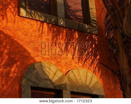 Mexican Fire Orange Wallscape No. 2