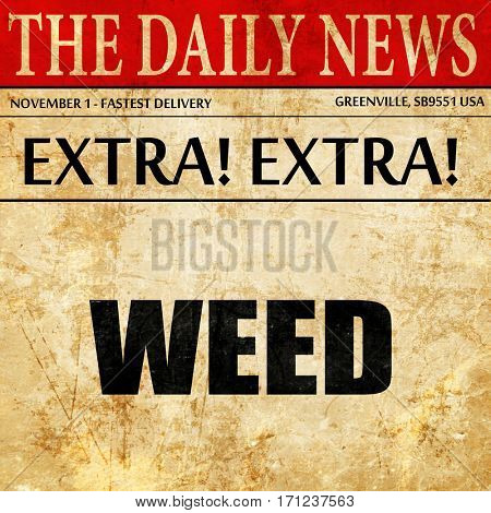 weed, article text in newspaper