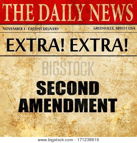 second amendment, article text in newspaper