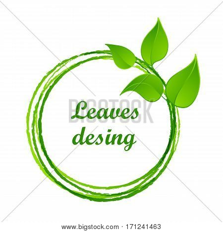 Green leaves or leaf graphic icon design, vector illustration