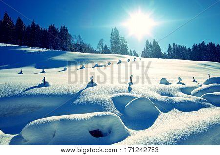 winter in the german alps