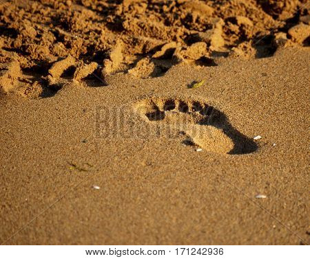trace of man feet on the golden sand